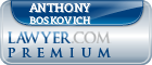 Anthony Martin Boskovich  Lawyer Badge