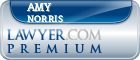 Amy Humes Norris  Lawyer Badge