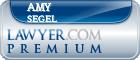 Amy Kathleen Segel  Lawyer Badge